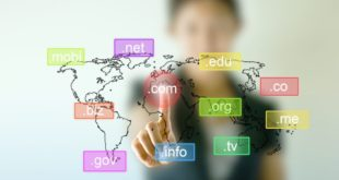how to choose perfect domain